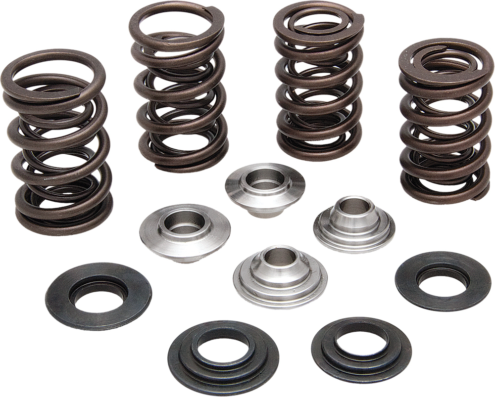 RACING VALVE SPRING KIT .550 LIFT