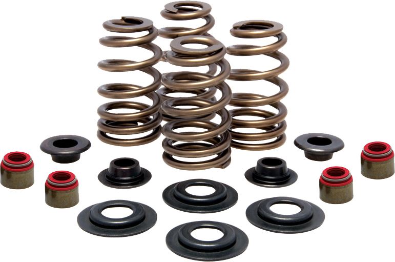 RACING VALVE SPRING KIT .630 LIFT